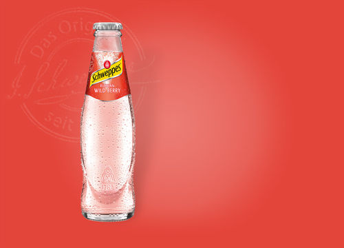 Schweppes Russian Wild Berry 0,2